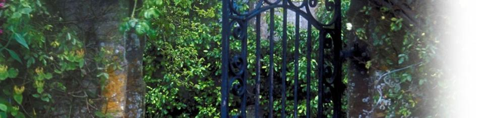 image of gate with plants